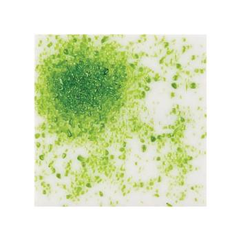 Moss Green - 4lb Jar
