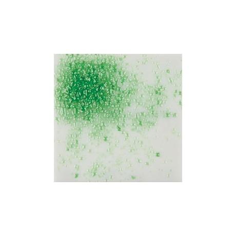 Light Green - 4lb Jar