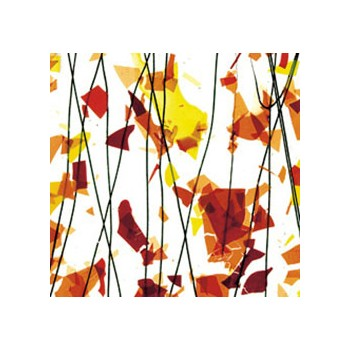 Autumn: Orange, Yellow, and Red on Clear