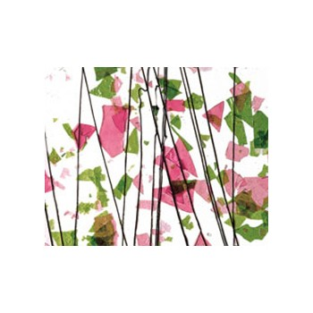 Spring Green and Deep Pink on Clear