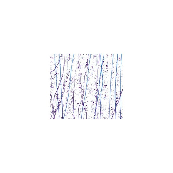 Neo-Lavender and Purple Frit, Cobalt Blue and Purple Streamers
